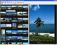 Screenshot of Digital picture database program for Windows