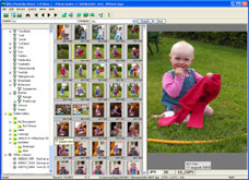 Screenshot of Digital photo album database program for Windows