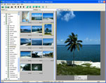 digital picture album with large thumbnails